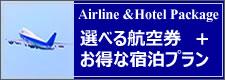 選べる航空券+お得な宿泊プラン